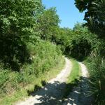 Chemin d'accès de 500m dans la propriété