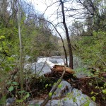 Rivière agitée